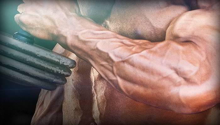 कलाई और फोरआर्म्स में क्या फर्क है - Difference Between Wrist and Forearms