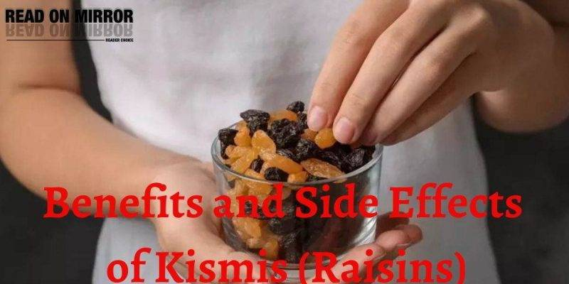 kismis ke fayde किशमिश (Kismis) के 15 फायदे और नुकसान - Benefits and Disadvantage of Raisins। उपयोग और सावधानियां